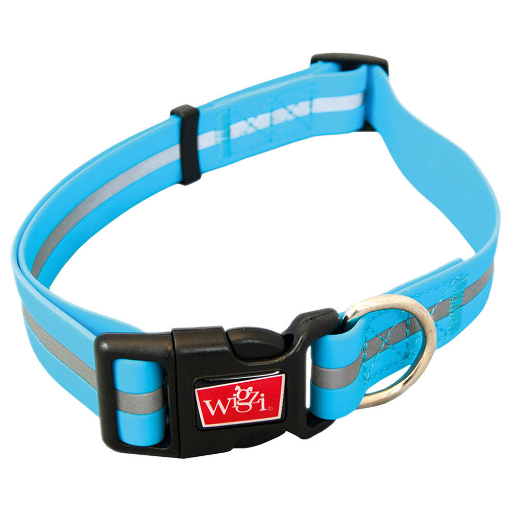 Wigzi Waterproof Sport Collar - Blue, Large