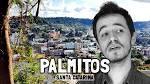 image de Palmitos Santa Catarina n-17