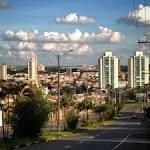 imagem de Araras São Paulo n-9