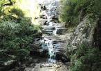 imagem de Cerro Grande do Sul Rio Grande do Sul n-13