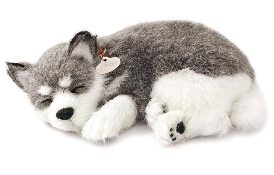 Perfect Petzzz Alaskan Husky Soft Toy