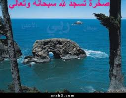 غرائب images?q=tbn:ANd9GcT