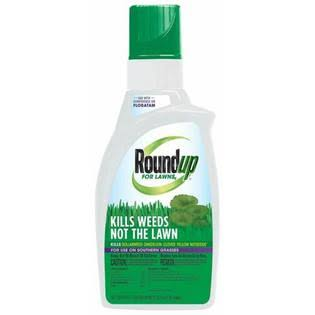 Roundup Northern Weed Killer - 32oz