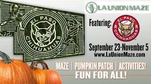 Pas Pumpkin Patch 2017 by Minor League Promos Milbpromos Twitter