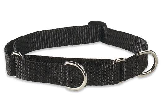 LupinePet 3/4 Inch Martingale Combo Collar - Black