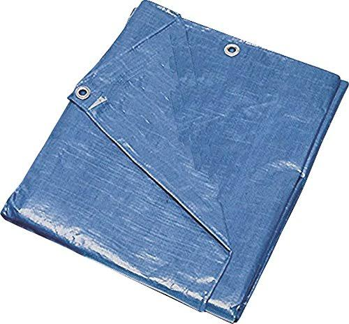Mintcraft Multi-Purpose Tarp - Blue