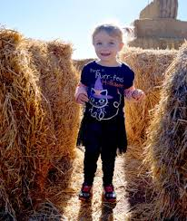 Free Pumpkin Patches In Colorado Springs by Our Trip To Colorado Pumpkin Patch Healthy Happy Thrifty Family