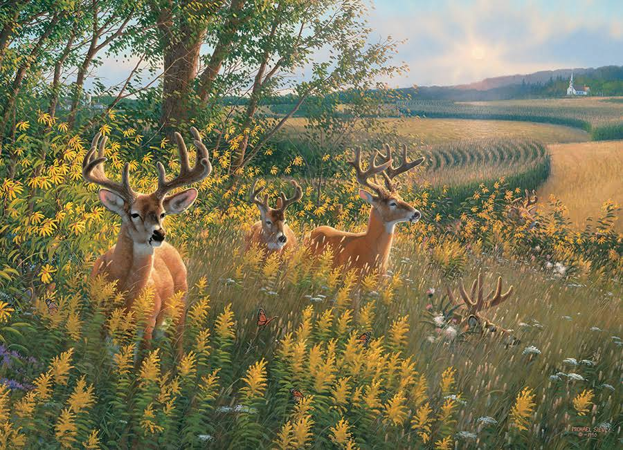 Summer Deer 1000 PC Puzzle