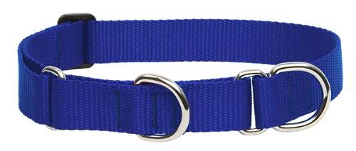 LupinePet Martingale Combo Dogs Collar - Blue, 9-27""