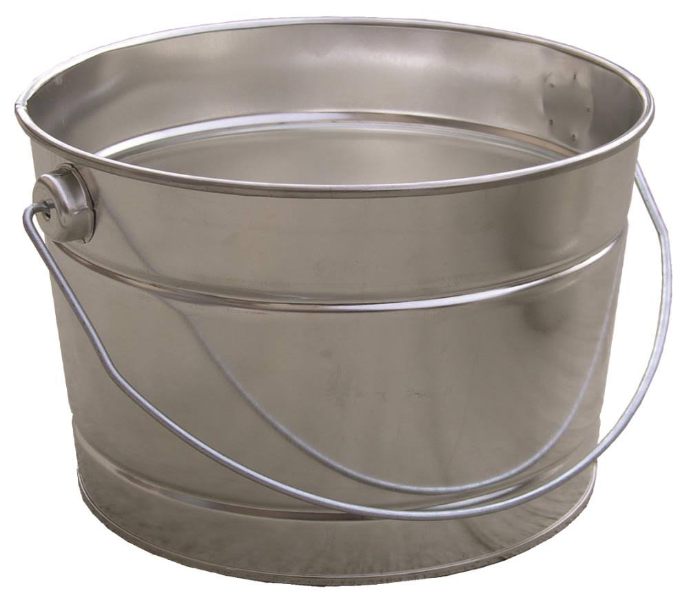 Encore Plastics Metal Pail With Handle - 2.4l