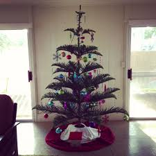 Pine Cone Christmas Trees For Sale by Norfolk Pine Christmas Tree Christmas Pinterest Norfolk