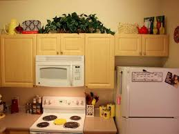 Above Kitchen Cabinet Decorations Pictures by Decorating Top Of Kitchen Cabinets Home Design Ideas And Pictures