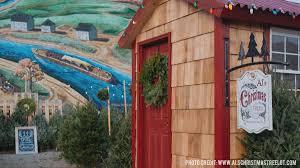 Pea Ridge Christmas Tree Farm by Where To Buy Christmas Tree Christmas Lights Decoration