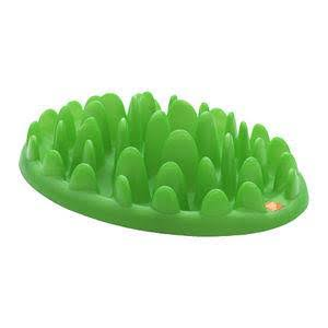 Company Of Animals Slow Dog Feeder - Green