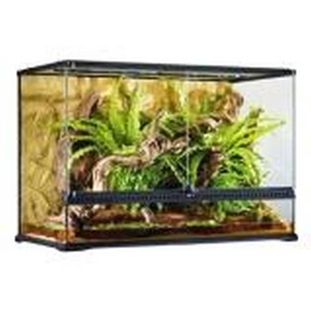 Exo Terra Glass Terrarium - 36in x 18in x 24in