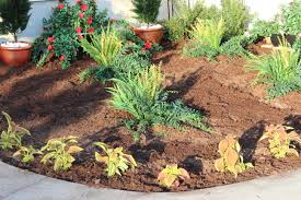 Flowers For Flower Beds by How To Layout Artificial Plants For Your Flower Bed