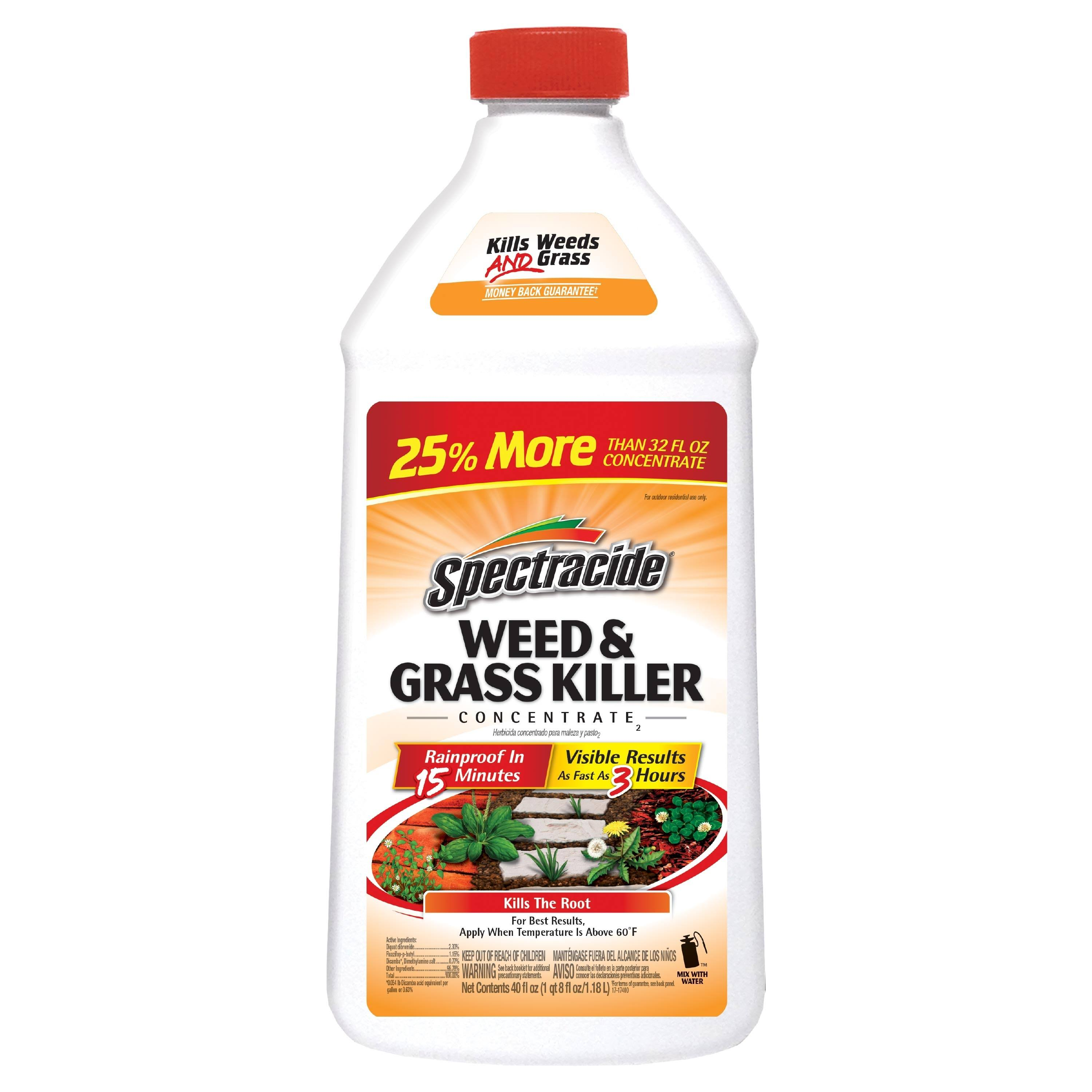 Spectracide Weed & Grass Killer Concentrate - 40oz