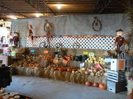 Free Pumpkin Patches In Colorado Springs by Honey Haven Farm Farm Market Greenhouse Corn Maze Pumpkin