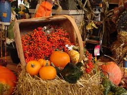 Circleville Pumpkin Festival Parade by Your Guide To The Best Central Ohio Fall Festivals