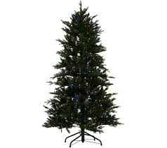 7ft Black Pencil Christmas Tree by 7 Ft To 7 1 2 Ft U2014 Christmas Trees U2014 Christmas U2014 Holiday U2014 For The