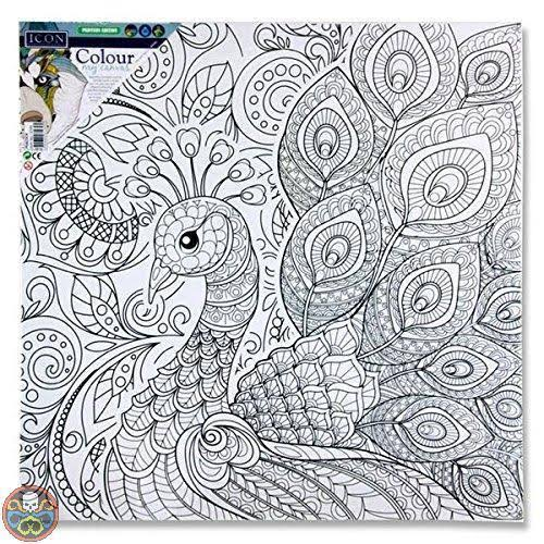 Premier Stationery G3812395 300 x 300 mm My Canvas Peacock Icon Colour