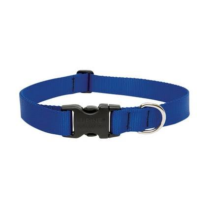 Lupine Dog Collar - Blue