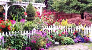 Flowers For Flower Beds by Garden Ideas Beautiful Flower At House Home Decor Unizwa Also