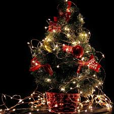 Christmas Tree Amazon Prime by Amazon Com Gorgeous String Lights Copper Wire Starry String