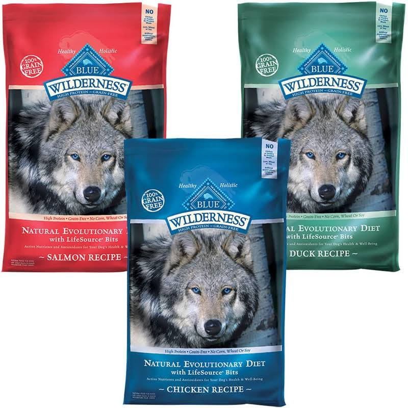 Blue Buffalo Wilderness Adult Dry Dog Food - Salmon, 11lbs