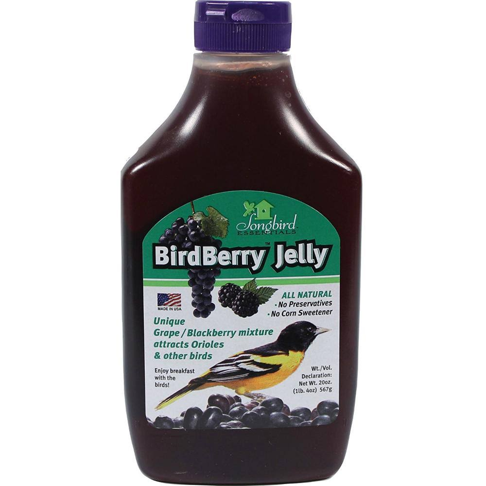 Songbird Essentials Bird Berry Jelly - 20oz