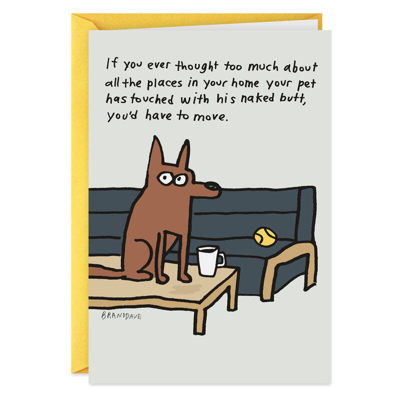 Where The Dog Sits Funny Birthday Card