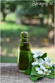 Pumpkin Seed Oil For Hair Loss Dosage by 7 Amazing Hair Skin U0026 Health Benefits Of Bhringraj