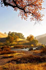 Pumpkin Patch Bakersfield California by Best 25 El Dorado California Ideas On Pinterest Sonoma