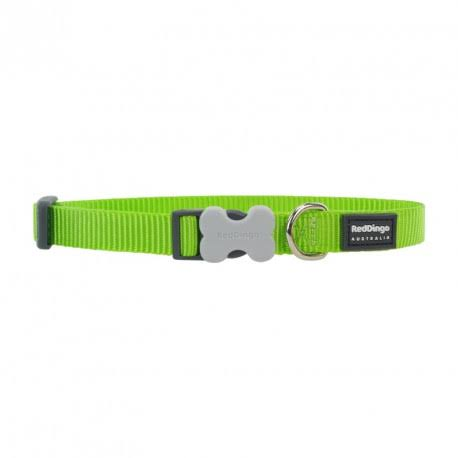 Red Dingo Bucklebone Classic Dog Collar - Lime Green, Small