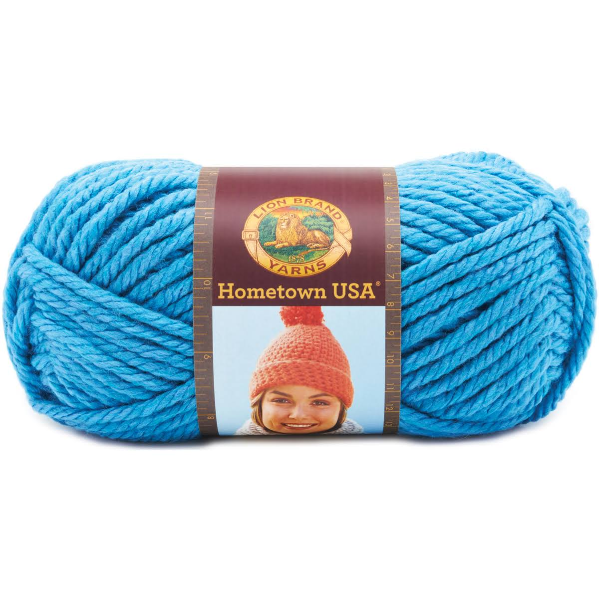 Lion Brand Detroit Blue - Hometown USA Yarn