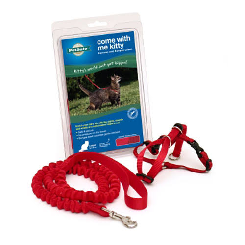 Premier Petsafe Come With Me Kitty Harness And Bungee Leash - Red, Large