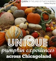 Pumpkin Fest Highwood by Unique Pumpkin Experiences In Chicagoland Queen Of The Land Of