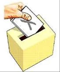 Votar amb el cap