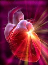 الجلطة القلبية والوقاية منها