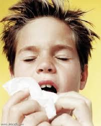 تقوية المناعة ضد الانفلونزا